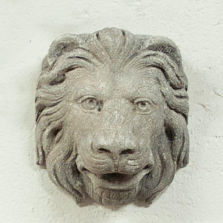 Leoncino Mask