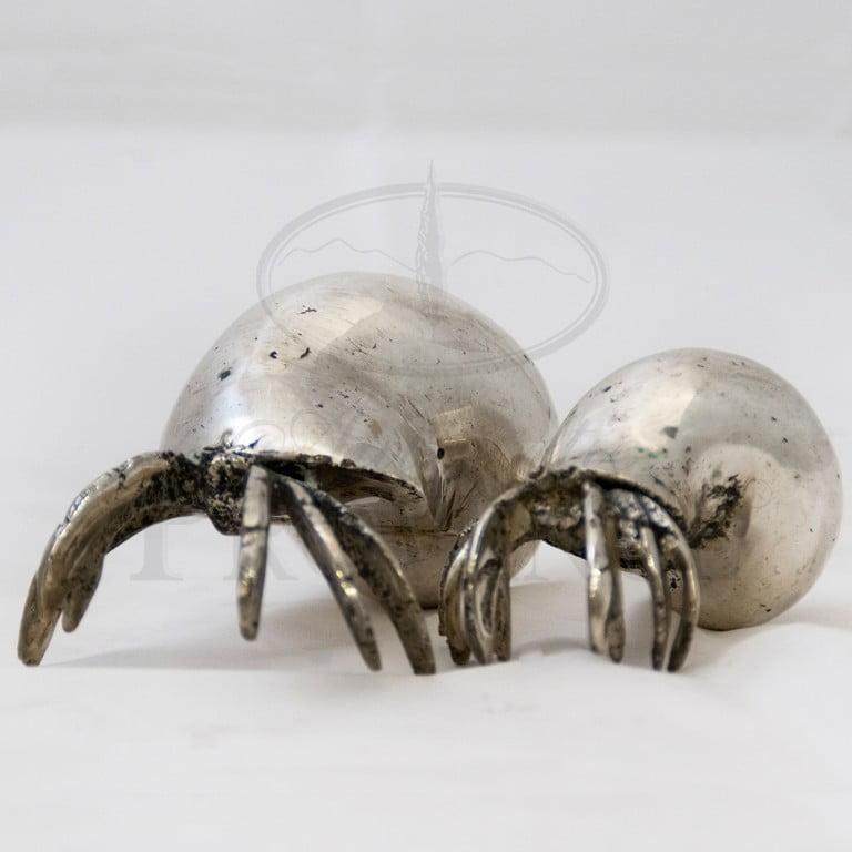Ibu Hermit Crab
