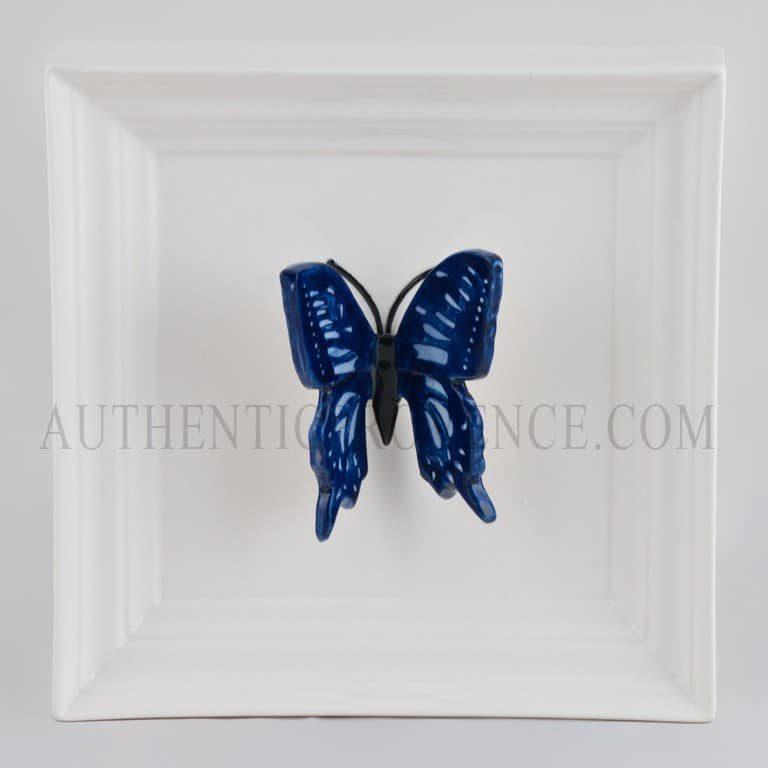 Papillon Long Blue