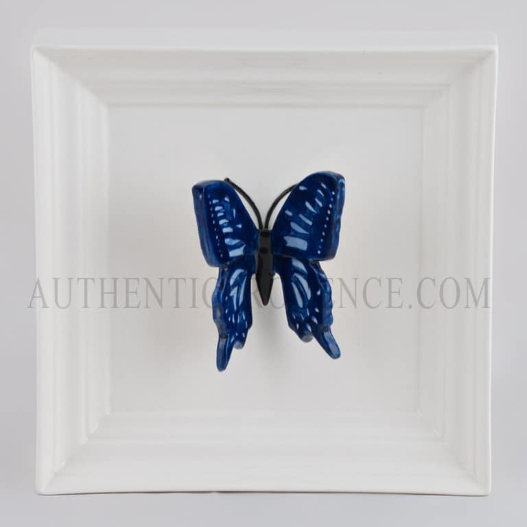 Papillon Long Blue