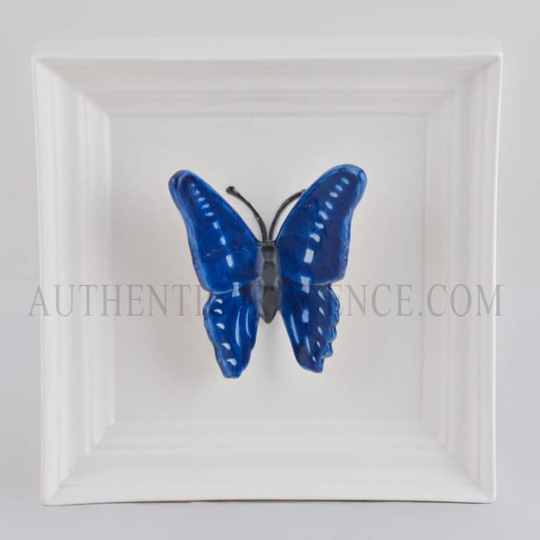 Papillon Long Bleu