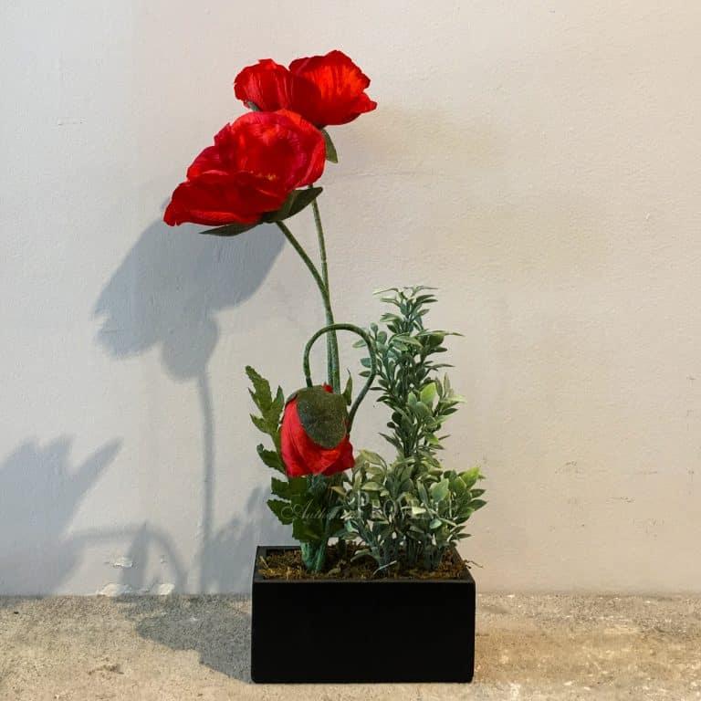 Poppy Flower Pot