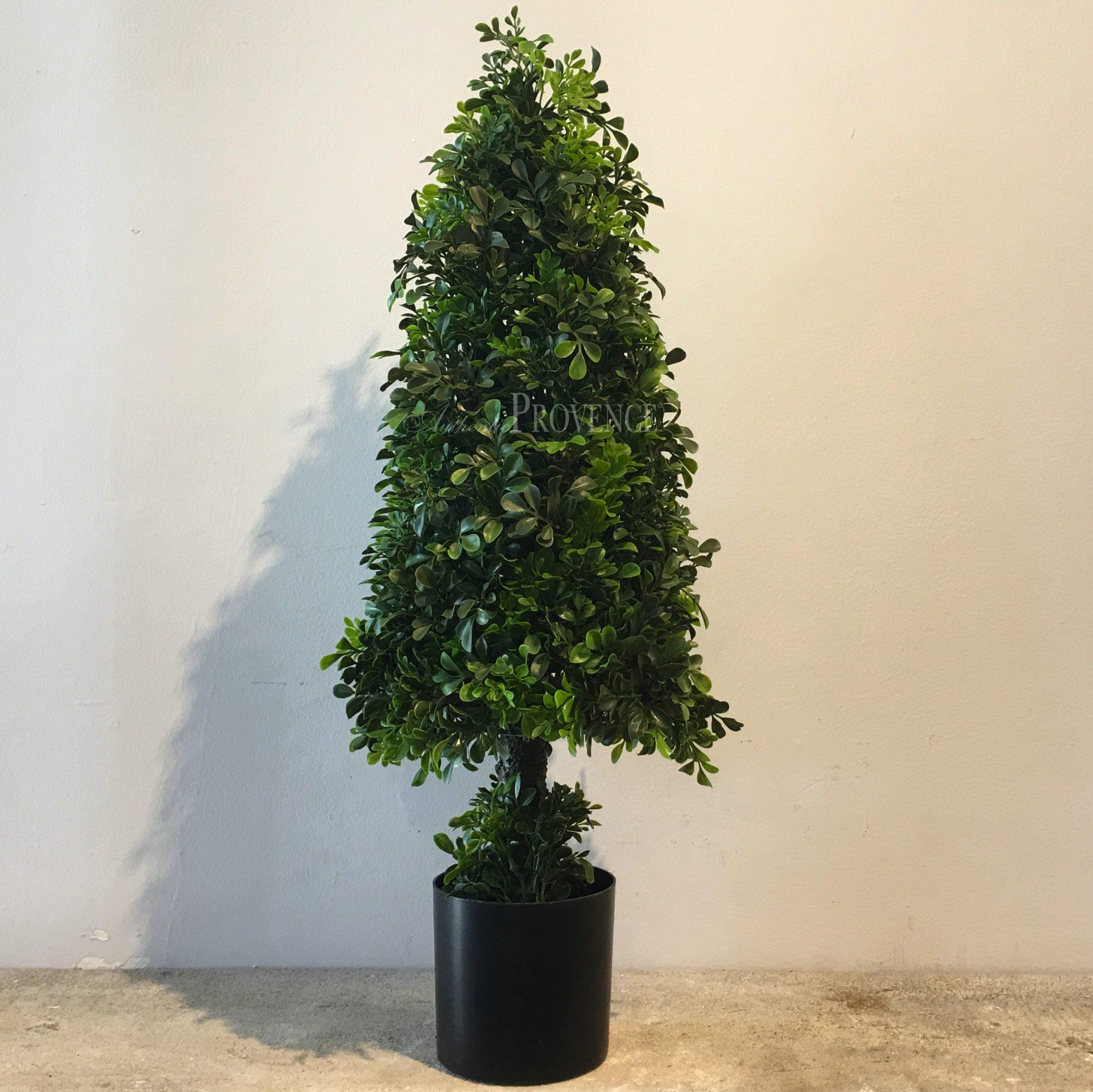 Camilla Topiary
