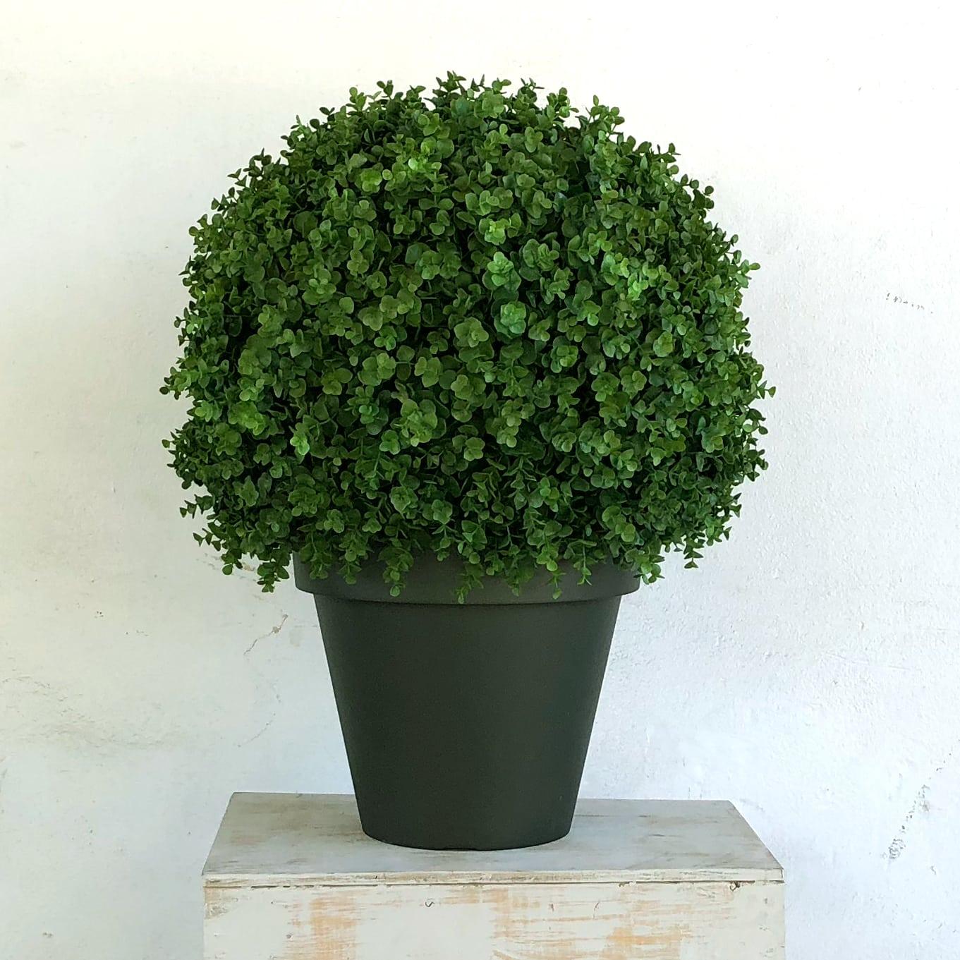 Niels Topiary