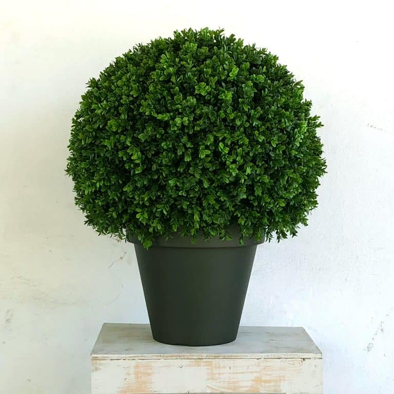 Wout Topiary