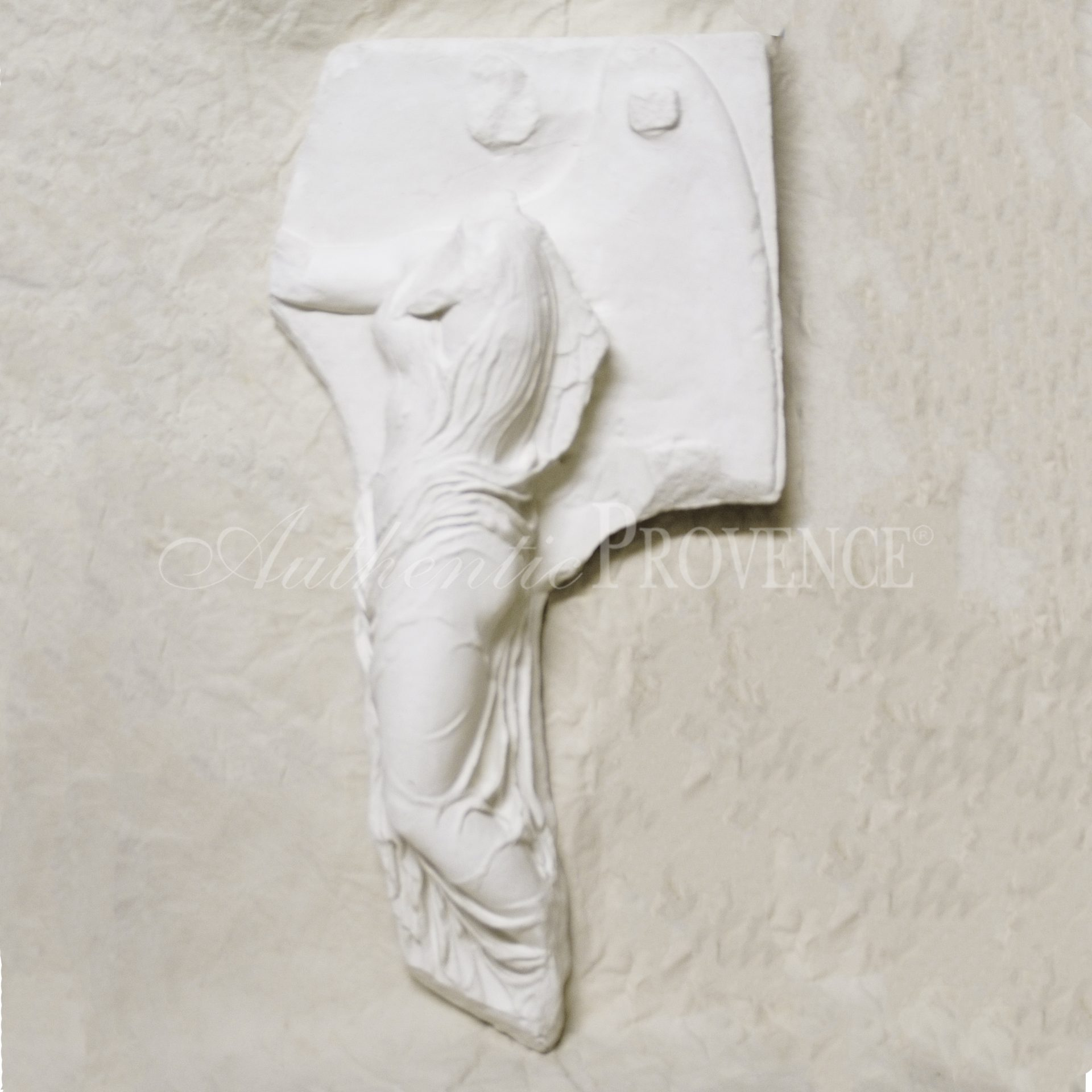 Wall Relief of Nike