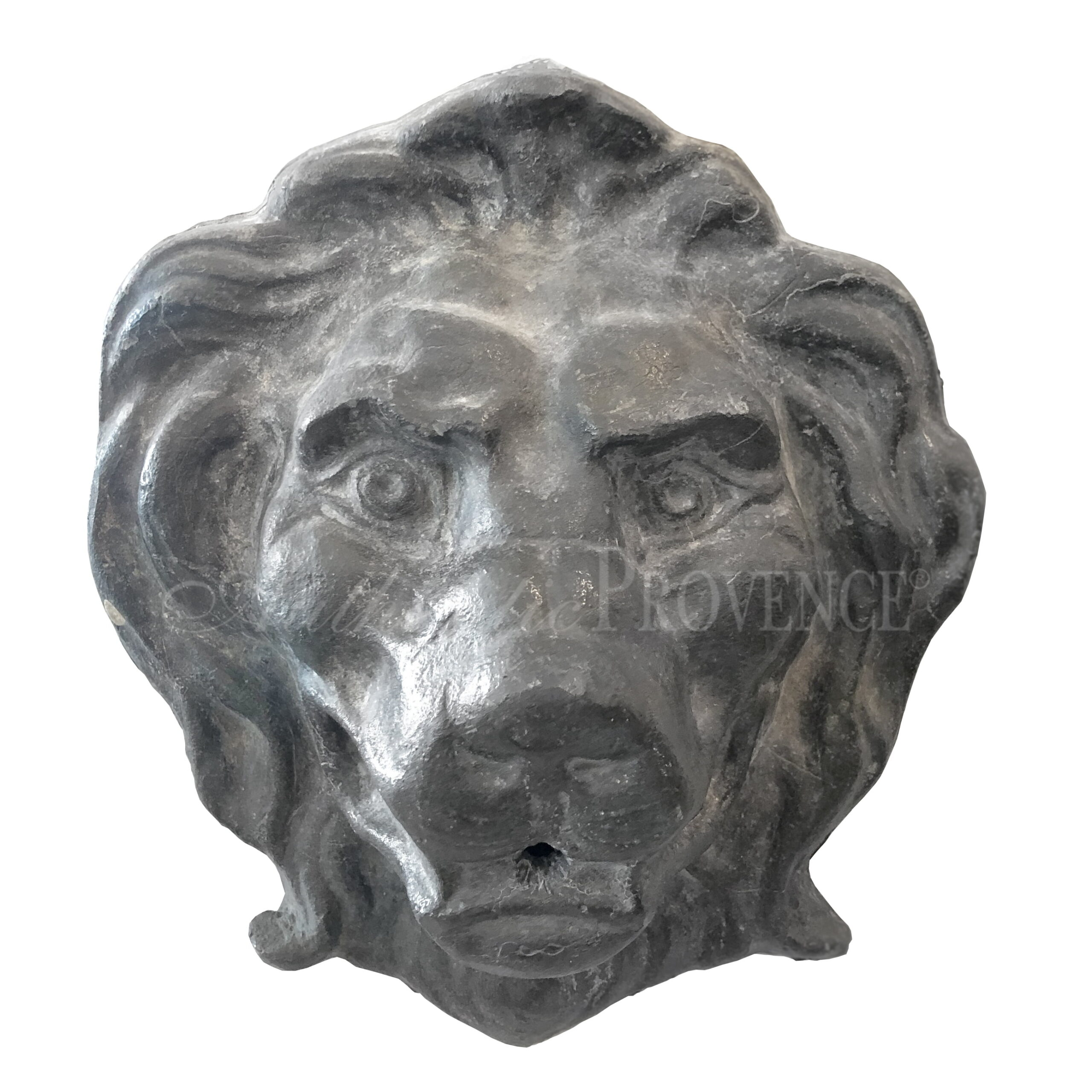 Small Lion Head
