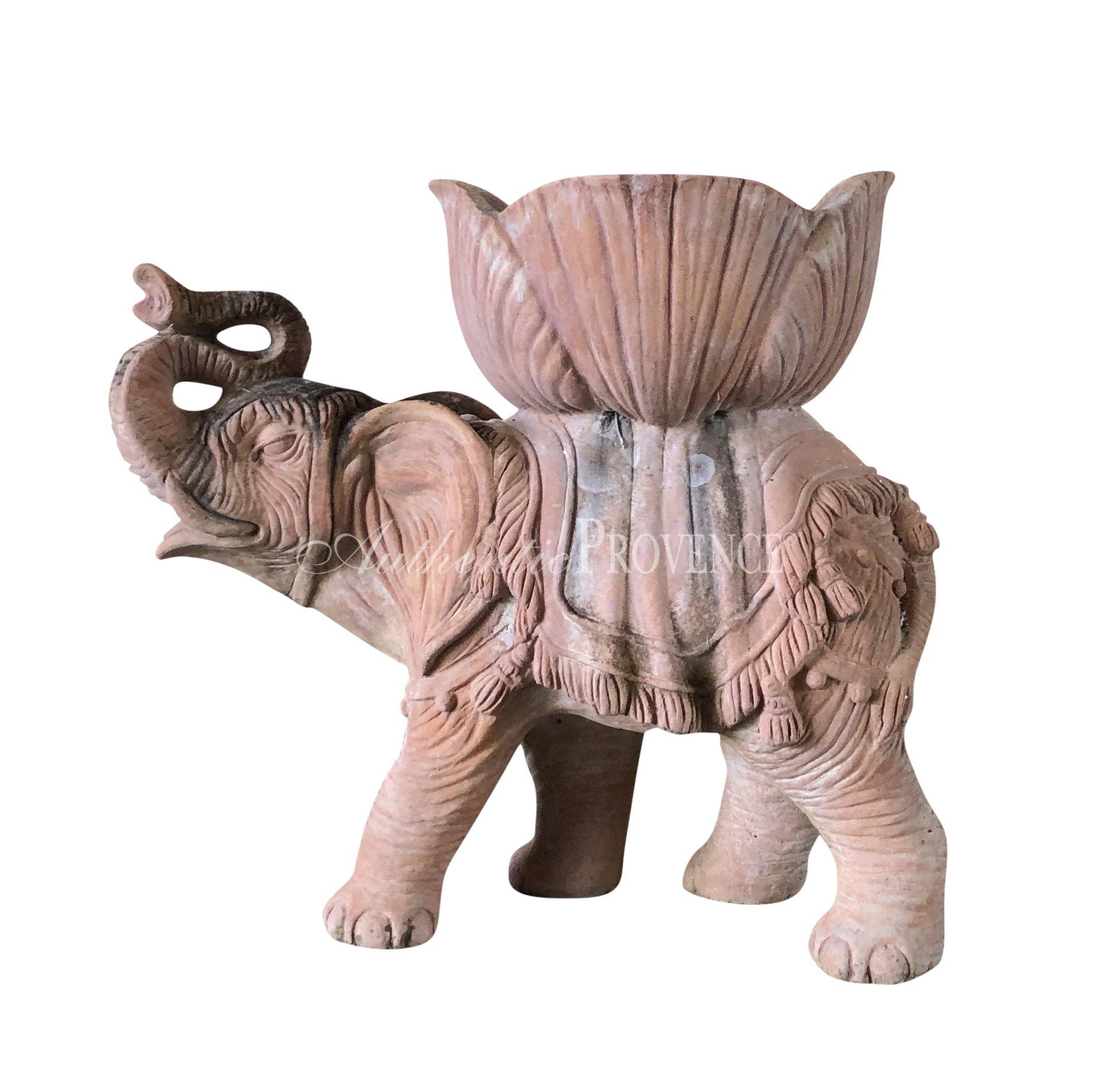 Elefante Colodi