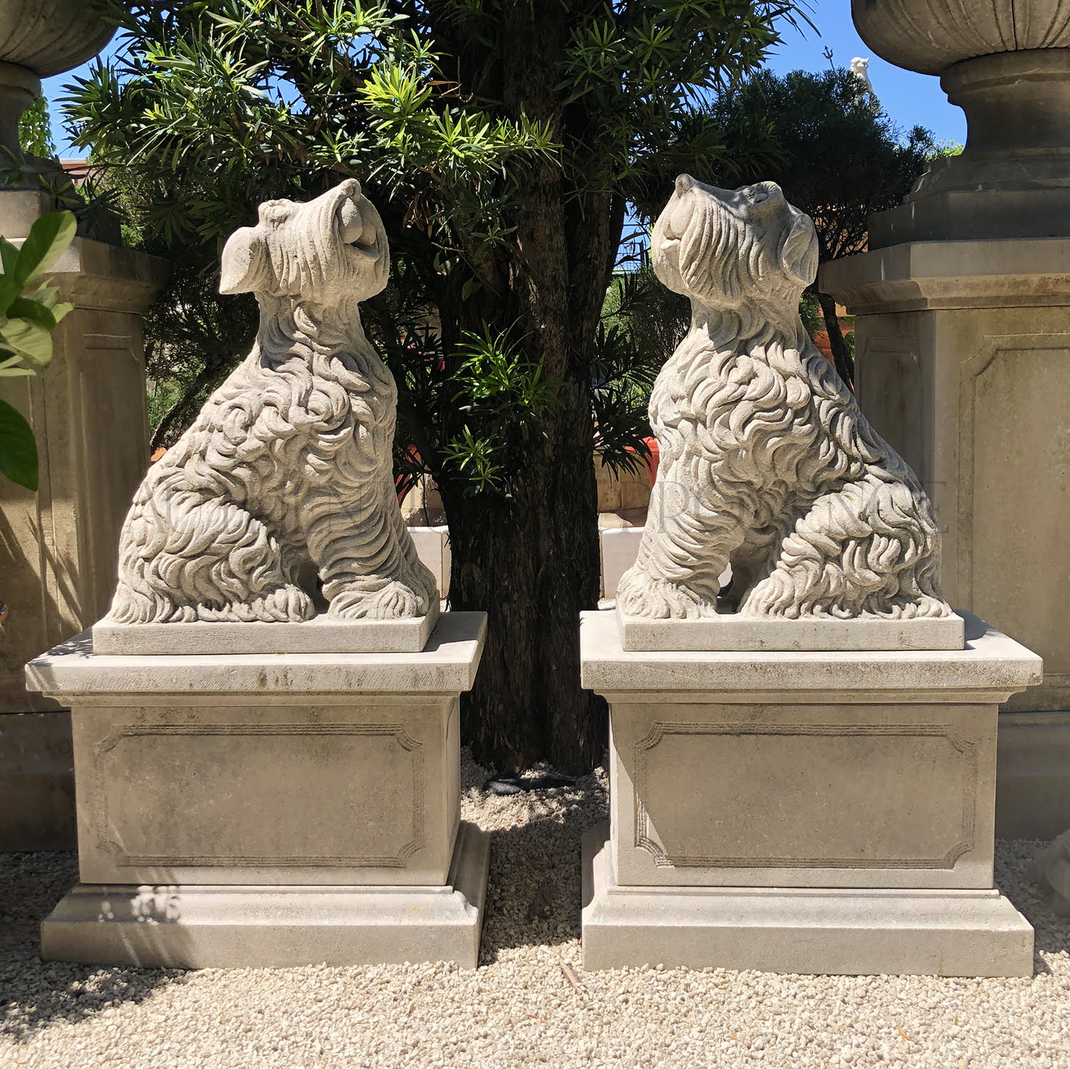 Pair of Schnauzer Dogs