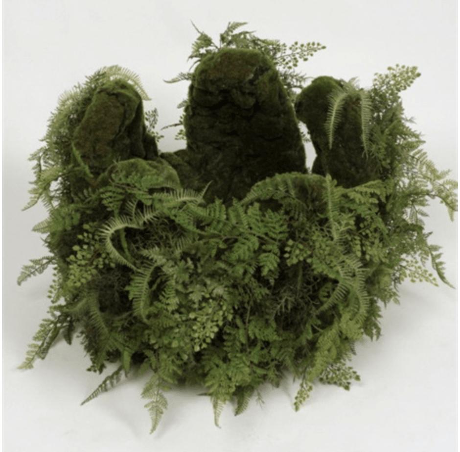 Organic Fern Arrangement