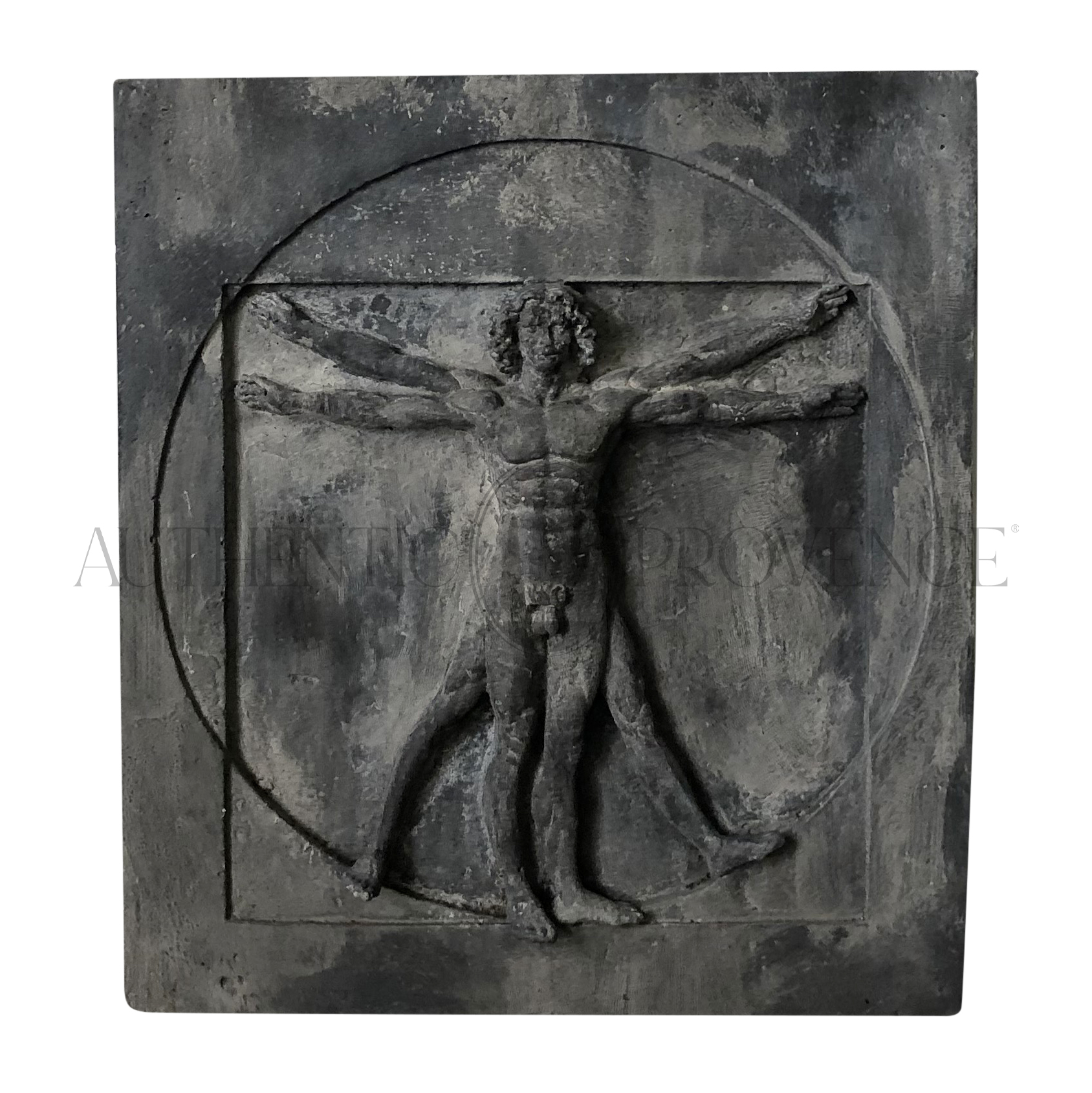 Vitruvion Man Wall Plaque
