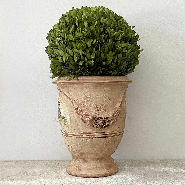 Petite Antica Planter