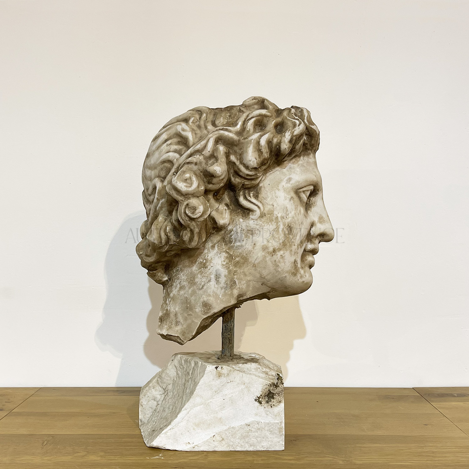 Alexander the Great Fragment