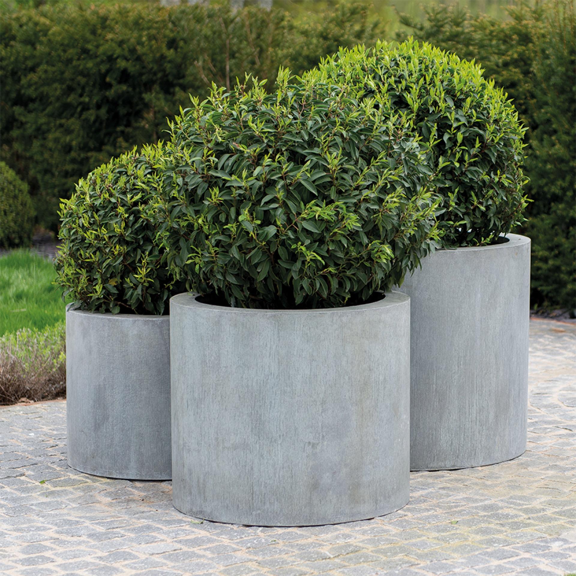 Elijas Round Planter